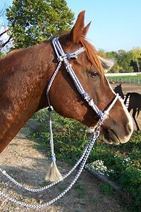 Bridles/headstalls: comfortable, easily adjustable, non-irritating