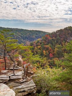 Hiking in Georgia State Parks: our top 10 favorite trails.  Georgia State Parks offer some of the most popular, scenery-packed hiking trails across Georgia's incredibly diverse terrain. Our top ten favorite trails in Georgia's State Parks.