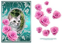 Pink Roses Tabby Kitty Cat Silver Jade Card Front on Craftsuprint - Add To Basket!