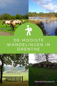 Op zoek naar een mooie wandeling in Drenthe? Ik ging wandelen in Drenthe en deel mijn tips hier. #wandawandelt #wandelen #drenthe #wandelenindrenthe #wandeling