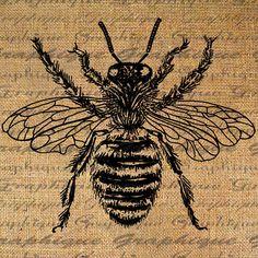 Bee Tattoo, Wasp Tattoo, Clip Art, Bee Art, Bee Happy, Bees Knees, Queen Bees, Digital Collage, Digital Image