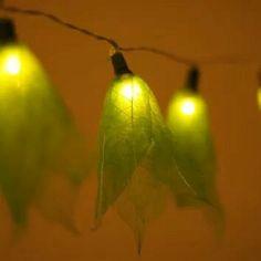 Leaf lights :)