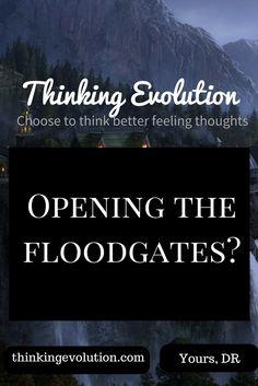Opening the Floodgates- Thinking Evolution