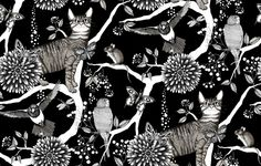 Catzy - (Nadja Wedin) Wallpaper Tapetit / tapetti - Photowall