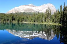 Lake O'hara Canadian Rockies [OC] [3456x2304]
