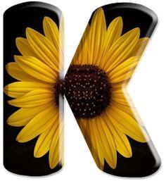 Printable Alphabet Letters, Alphabet Letters Design, Flower Alphabet, Frozen 1, Growing Sunflowers, Lettering Design, Daisy, Christmas, Beautiful