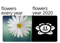 Meme Gen, Calm, Memes, Flowers, Artwork, Work Of Art, Auguste Rodin Artwork, Meme, Artworks