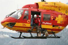 Als Rettungshund