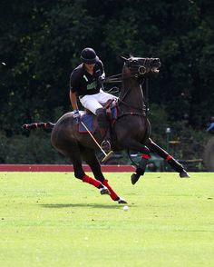 Polo Kirtlington August Chukka Cup