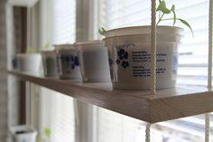 home made shelf for plants