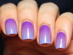 Heliotrope Gradient - Globe & Nail