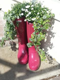 Welly flower boots by Cambridge And Co.