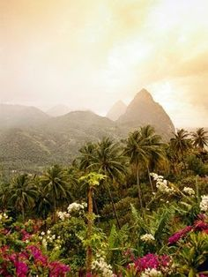THE AMAZING WORLD: St. Lucia's glorious rain-forest and Pitons