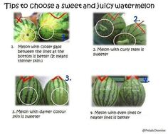 How to choose the perfect watermelon! | Recipes for Foodies