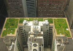Rendering of green roof atop Chicago's city hall building #greenroof #sustainability #urbanplanning