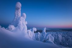 https://flic.kr/p/ENFKDk | Winterland (Laponie, Finlande) | Quatre heures d'avion depuis la France et me voici transporté dans un autre monde. Après avoir passé deux mois dans le Massif Central frustré comme jamais avec un hiver qui n'arrivait pas, la Laponie finlandaise me rappelle de bon vieux souvenirs d'hiver canadien, le vrai, celui où l'air sec et glacé fige tout, où la neige est si poudreuse que faire un bonhomme de neige est impossible, et où les ambiances et les couleurs sont si…