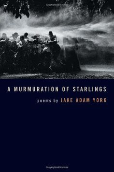 A Murmuration of Starlings (Crab Orchard Award Series in Poetry) by Jake Adam York http://www.amazon.com/dp/0809328372/ref=cm_sw_r_pi_dp_kukmvb17E5F3N