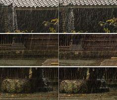 iPhone 7: fotocamera a confronto con Leica M9-P