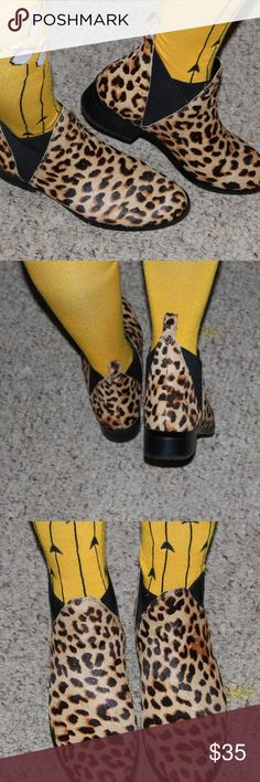 Animal Print Booties Easy slip on and off fit.  Elastic stretches on side. Shoe box included. Aldo Shoes Ankle Boots & Booties
