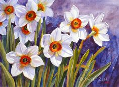 Narcissus Flowers Daffodils Original Watercolor Painting