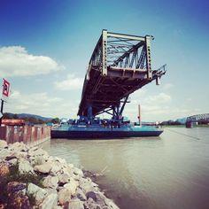 #eisenbahnbrücke  derzeit in #sarens händen alles #ok - jetzt #warten  auf #idee und #konzept by #gls  #igerslinz #linzpictures #lowl #lnz #swimming #summer #instaweather #danube #donau #riverdanube #feiertag #monday #linzag #baustelle #construction #bridge #hopethebest #hoffnung
