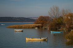 gölyazı - Google'da Ara