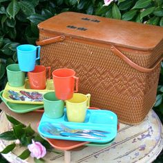 our family had a picnic basket like this.  It was green and brown.  it was pretty cool.