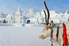 Image detail for -Snow Sculpture festival China toursim