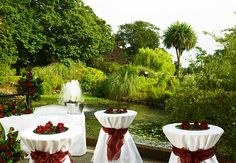 Treat your guests to drinks in the luscious green surroundings of the Tudor park Hotel & Country Club