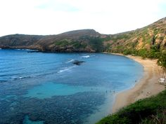 Hanauma Bay, Oahu, incredible snorkeling photo by Michele Nelson