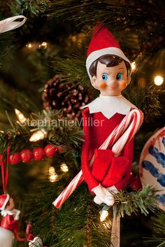 Elf decorating the tree with candy canes