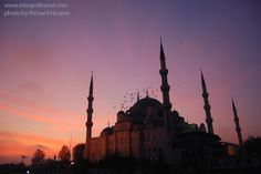 Blue Mosque, Istanbul Blue Mosque Istanbul, Sultan Ahmed Mosque, Sun Worship, Small Group Tours, Istanbul Turkey, The Locals, Travel Inspiration, Taj Mahal, Places To Go