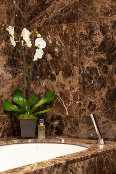 The varying brown tones of Dark Emperador are offset by the white veining of this unique marble.
