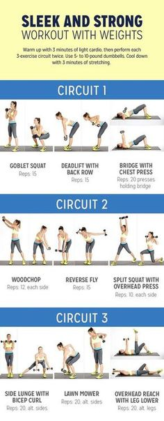 New Fitness Training Plan Workout Routines Weight Loss Ideas Fitness Workouts, Weight Training Workouts, Fitness Workout For Women, Fun Workouts, At Home Workouts, Weight Exercises, Workout Routines, Gym Circuit Workouts, Beginner Bodyweight Workout