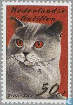 Francobollo: British Blue (Felis silvestris catus) (Antille Olandesi) (Gatti) Mi:AN Vintage Stamps, Vintage Art, Gatos Cats, Postage Stamp Art, Stamp Catalogue, Tampons, Fauna, Stamp Collecting, Dog Art