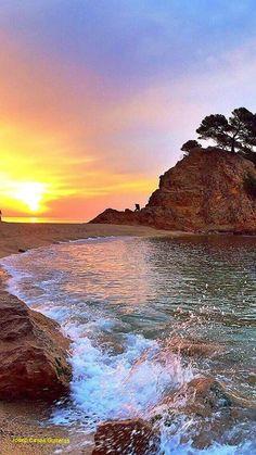 Cap Roig, Calonge., Empordà Catalonia