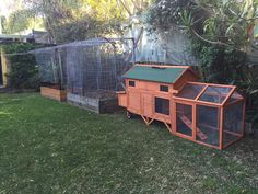 Not exactly my home, but home to our three chooks, Pecky, Greta and Sherry