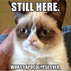 Worst apocalypse ever - grumpy cat