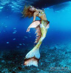 'I'm a Professional Mermaid—for Real'  http://www.womenshealthmag.com/life/professional-mermaid