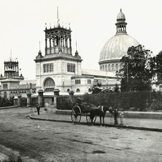The cause of devastating Sydney Garden Palace fire has never been found, but one remarkable object was saved from the inferno. Underground Pool, Sydney Gardens, Australian Photography, Exhibition Building, Australian Architecture, Vintage Architecture, Liverpool Street, History Projects, Famous Landmarks