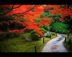 紅葉を見に行きたくなる!日本の美しい紅葉画像集 (2ページ目)|MERY [メリー]