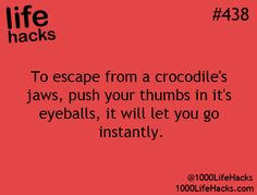Um I don't know if I'm gonna be wresting a crocodile any time soon but I guess this is just good to know.