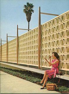 "Modern Charlotte - retro decorative concrete blocks ""breeze blocks"" or ""screen blocks"" Mid Century House, Mid Century Style, Decorative Cinder Blocks, Breeze Block Wall, Geek Decor, Exterior, Mid Century Modern Design, Midcentury Modern, Arches"