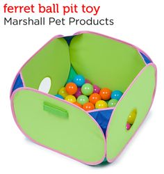A ball pit for ferrets! A great action-packed activity center from Petco's Holiday Gift Guide.