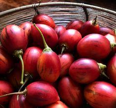 A new SavannaBel post - TREE TOMATOES, TAMARILLOS, TOMATES DE ÂRBOL + A GAZPACHO RECIPE www.savannabel.com #bushgourmet #apoem #arecipe #andrewsant