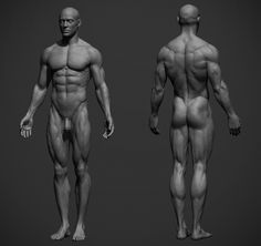 Adam Skutt Releases Male Anatomy Reference Sculpt for Download 3