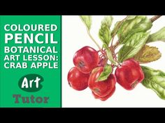 Color pencil tutorial. zentangle inspired art, color blending. Part One - YouTube