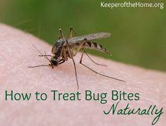 Treat bug bites
