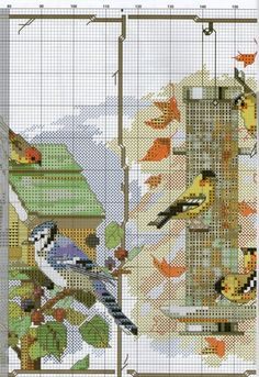 birds for all seasons 3/4