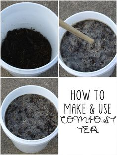 How to make and use compost tea